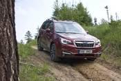Subaru Forester 2.0i-L: Na nákup, na expedici, kamkoli