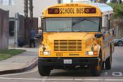 Blue Bird Conventional: Prostě školní autobus