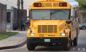 Historie: Blue Bird Conventional: Prostě školní autobus