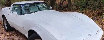 Chevrolet Corvette C3 5.7 1979 1979