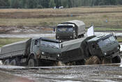 Sibiřští Mustangové
