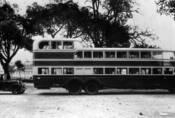 O štok výš: Z historie třípodlažních autobusů
