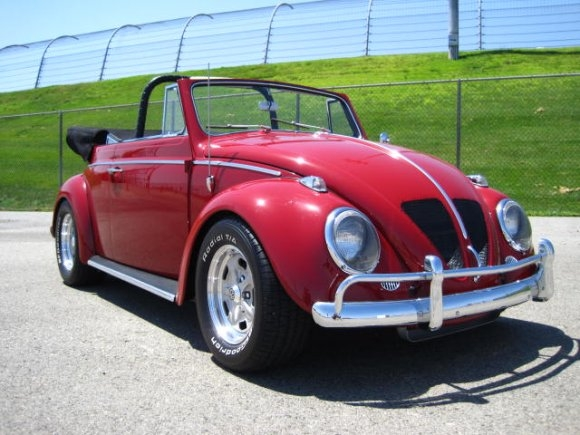 newman bug V8